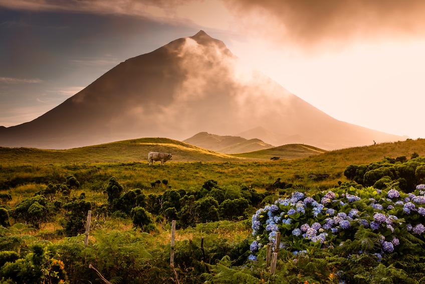Pico-Azores volcano